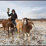 Ground zero in the war to protect and preserve Quebec's finite farmland