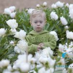 The little boy in the peony field