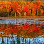 Fall foliage in The Berkshires
